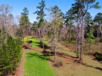 Beautiful Madison Farm : Greenville : Madison County : Florida