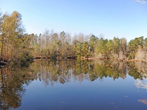 Hwy 501 Marion Co Acreage & Pond : Marion : South Carolina