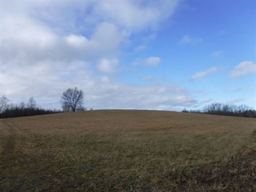 48.86 Ac, Year Round Creek, Pasture : Deer Lodge : Morgan County : Tennessee