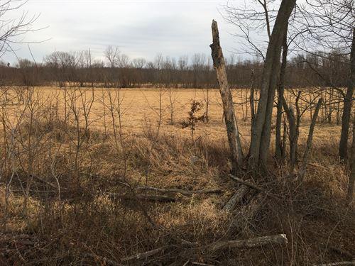 35 Acres Hwy 81 Clark County : Antioch : Clark County : Missouri