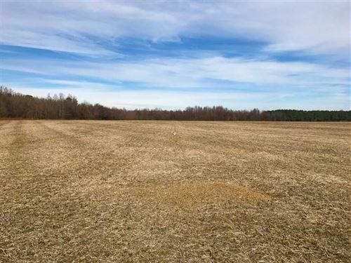 Under Contract, 62.5 Acres of Far : Stantonsburg : Wayne County : North Carolina