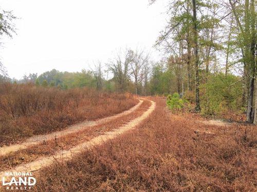 Aiken Long Leaf Tract With Homesite : Aiken : South Carolina