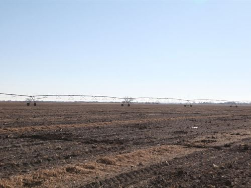 Dawson County Pivot Irrigated Land : Overton : Dawson County : Nebraska