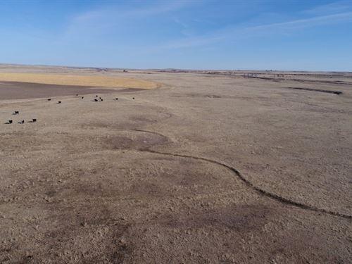 Panhandle Green Valley Ranch : Bushnell : Kimball County : Nebraska