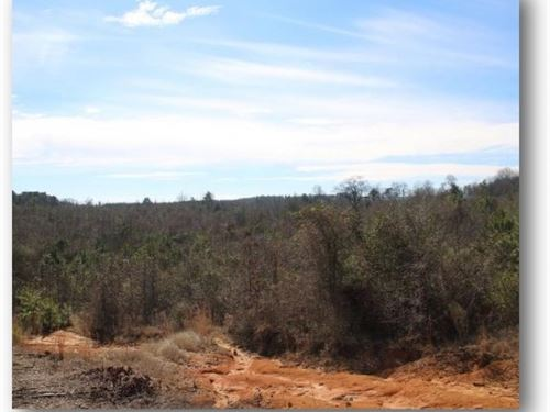 55 Acres In Leake County : Carthage : Leake County : Mississippi