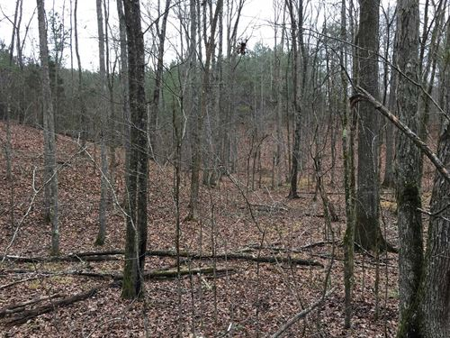 32 Acres Grady Road : Rockmart : Polk County : Georgia
