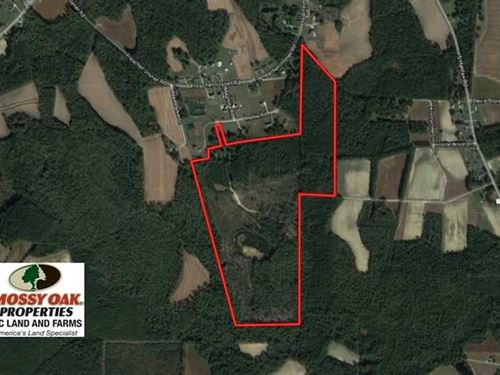 Under Contract, 100 Acres of Hunt : Rocky Mount : Nash County : North Carolina