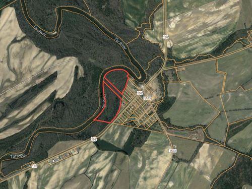 Waterfront Hunting Property : Tarboro : Edgecombe County : North Carolina
