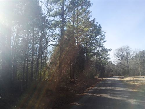 Tract 1517- Sealed Bid Land Sale : Middleton : Hardeman County : Tennessee