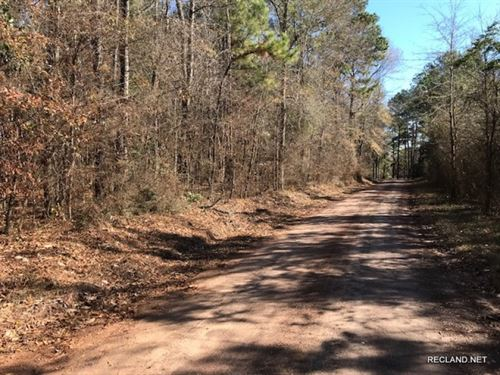 10.9 Ac - Wooded Tract For Rural Ho : Holly Springs : Jasper County : Texas