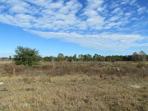 5 Acres 774850 : Morriston : Levy County : Florida
