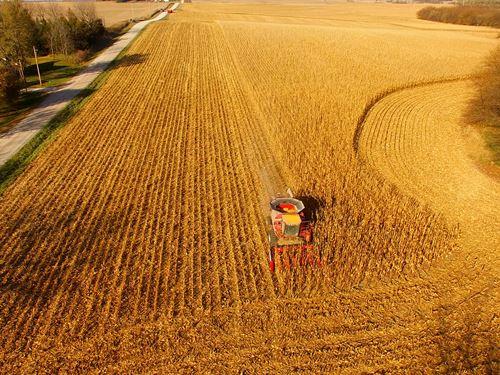 Land Auction In Cass Co., Nebraska : Elmwood : Cass County : Nebraska