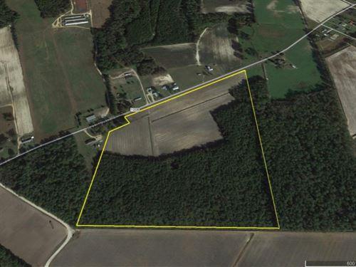 Hester Family Farm : Bentonville : Johnston County : North Carolina