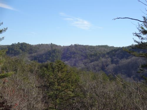 21 Acres Brasstown Road, Westmi : Westminster : Oconee County : South Carolina