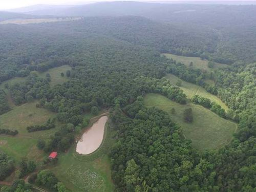 350 Acre Sportsman's Paradise in : Huntsville : Madison County : Arkansas