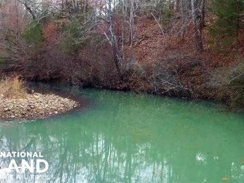 40 Acre Ouachita Mountain Huntin : Hollis : Perry County : Arkansas