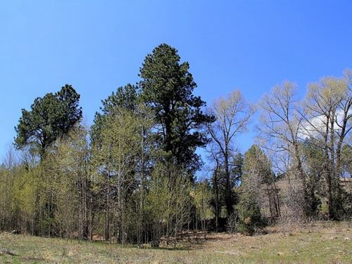 Willow Park, Lot 14 : South Fork : Rio Grande County : Colorado