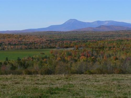 40 Acres In Caribou, ME : Caribou : Aroostook County : Maine