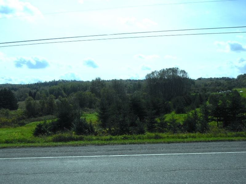 53.3 Acres In New Sweden, ME : New Sweden : Aroostook County : Maine