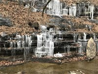 Blackburn Creek Hunting in The Oza : Winslow : Washington County : Arkansas