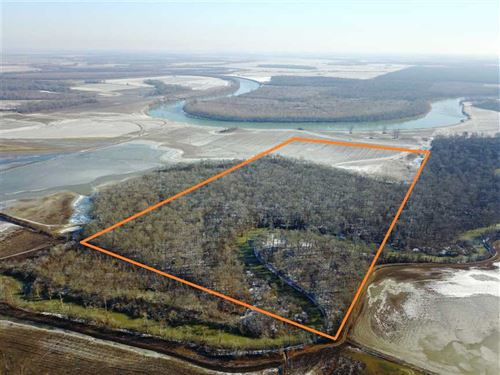 80 Acre Flooded Timber/Farmlan : Russell : White County : Arkansas