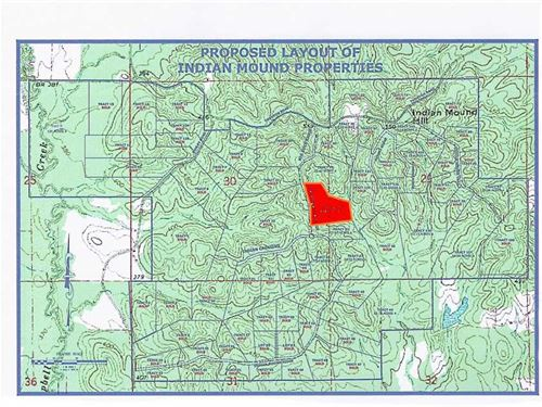 20.60 Acre, Tract 33, Mini-Fa : Brandon : Rankin County : Mississippi