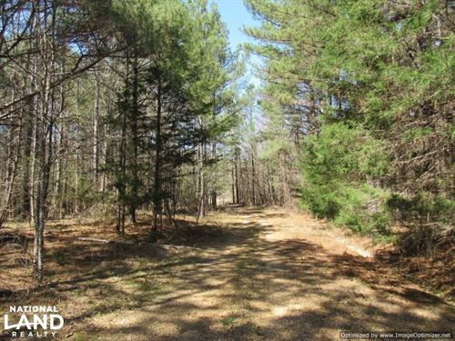 184 Acres in Attala County : Kosciusko : Attala County : Mississippi
