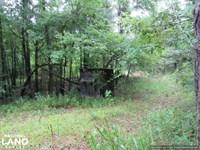 Secluded Hunting & Recreational Tra : Kosciusko : Attala County : Mississippi