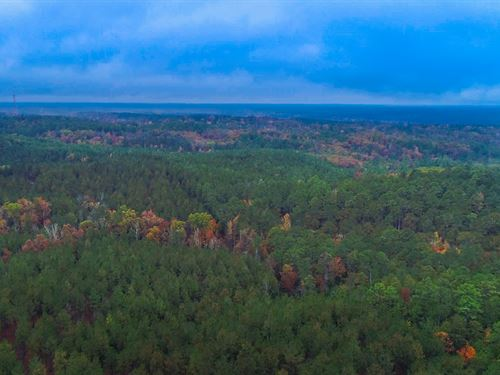 123 Acres Within Sumter Forest : Winnsboro : Fairfield County : South Carolina