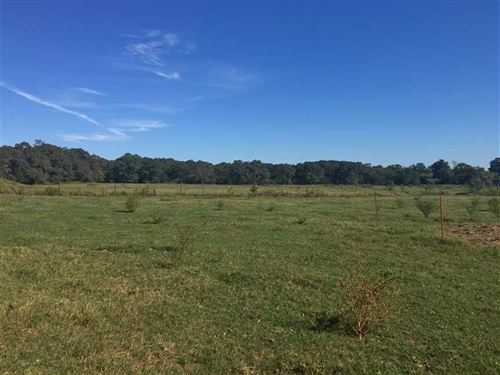 65 Acre Cattle Farm With Home in : Plumerville : Conway County : Arkansas