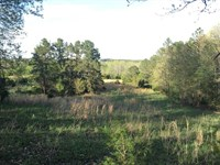 175 Acres, Home, Fenced, Cros : Floyd : White County : Arkansas
