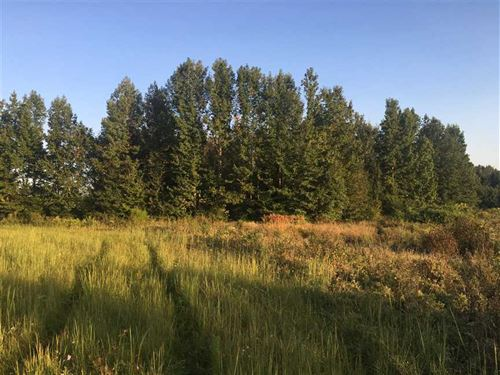 44 Beautiful Fenced Acres For yo : McRae : White County : Arkansas