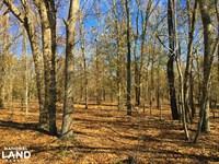 Barnwell Hunting & Farmland : Barnwell : Barnwell County : South Carolina
