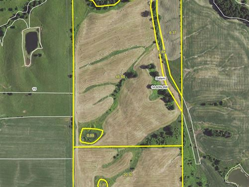 80 Acres Hwy 156 Lewis County : Ewing : Lewis County : Missouri