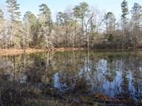 Big Indian Creek Tract With Pond : Madison : Morgan County : Georgia