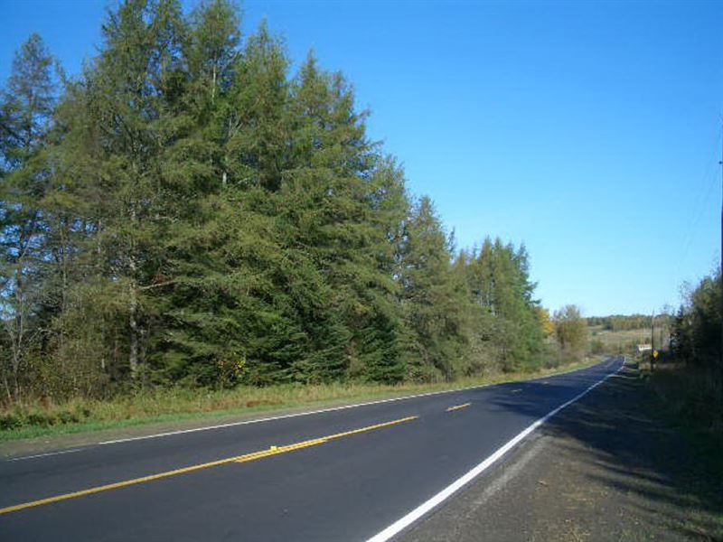 56 Acres In New Canada, ME : New Canada : Aroostook County : Maine