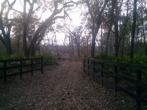 7+ Acres in Camden County, GA : Hickory Bluff : Camden County : Georgia