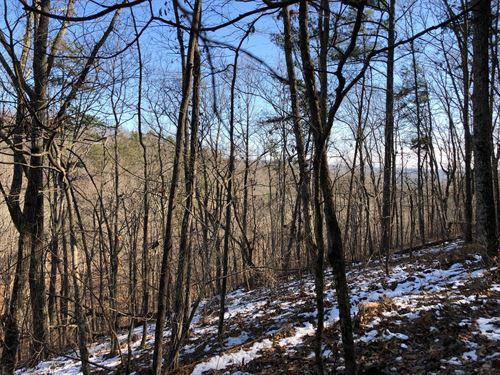53.27 +/- Wooded Acres, Gordon Co : Ranger : Gordon County : Georgia