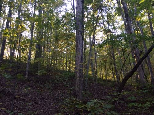Treat Mountain 41.23+/- Acres : Cedartown : Polk County : Georgia