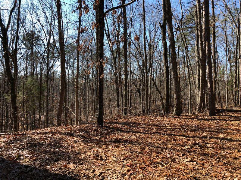 28.48 +/- Wooded Acres, Gordon Co : Ranger : Gordon County : Georgia