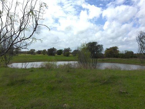 40 Recreational Acres : Stephenville : Erath County : Texas