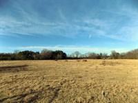 Sc Acreage For Farm, Ranch, Timber : Bennettsville : Marlboro County : South Carolina
