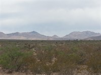 40 Ac. Near Electric & Paved Road : Sierra Blanca : Hudspeth County : Texas