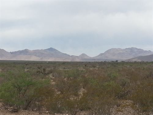 20 Acres With Electric On Paved Hwy : Sierra Blanca : Hudspeth County : Texas