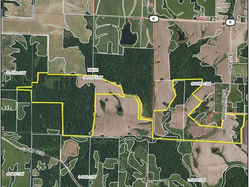 276 Acres County Rd 1191 Monroe Co : Madison : Monroe County : Missouri