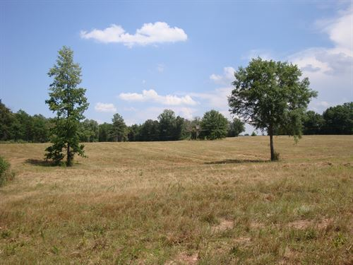 Rabun Church Farm : Gray Court : Laurens County : South Carolina