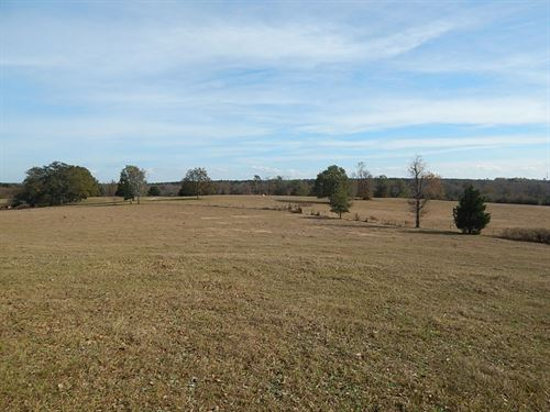 Little Brier Creek Turnkey Cattle : Thomson : McDuffie County : Georgia