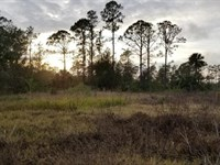 Country Home Retreat North Fort Mye : North Fort Myers : Lee County : Florida
