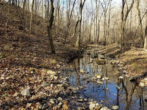 120 Acres Timber, Year Round Sprin : Dora : Douglas County : Missouri