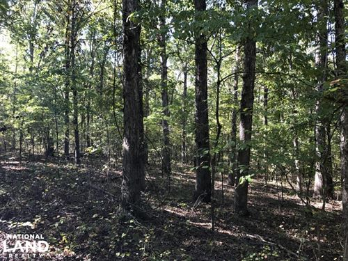 47 Acres Timberland & Hunting La : Bradford : Jackson County : Arkansas